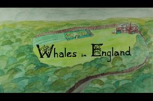 Whales in England